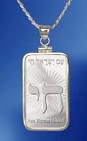 PAMP Israel 10g Fine Proof Silver Bar Necklace NPCM5-IS10-20DC5